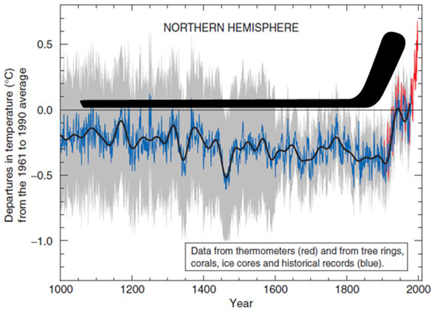 http://www.justfacts.com/images/globalwarming/hockey_stick_visual.PNG