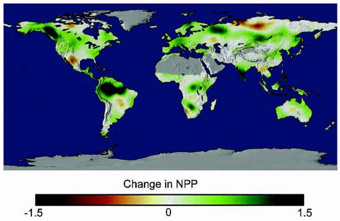 Vegetation Productivity, BioScience 2004