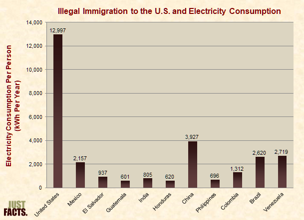 Illegal Immigration to the U.S. and Electricity Consumption