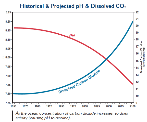 Historical & Projected pH & Dissolved CO2