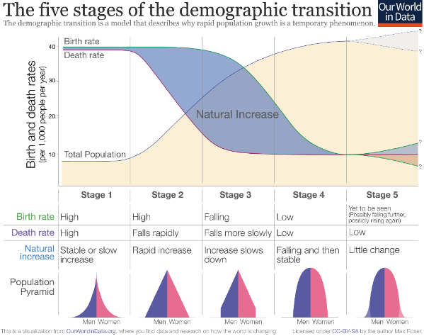 Demographic Transition Stages